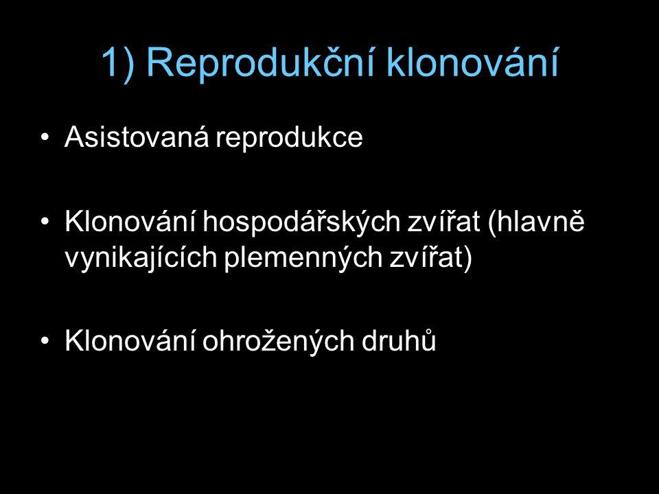 1) Reprodukční klonování Asistovaná reprodukce Klonování hospodářských zvířat (hlavně vynikajících plemenných zvířat) Klonování ohrožených druhů