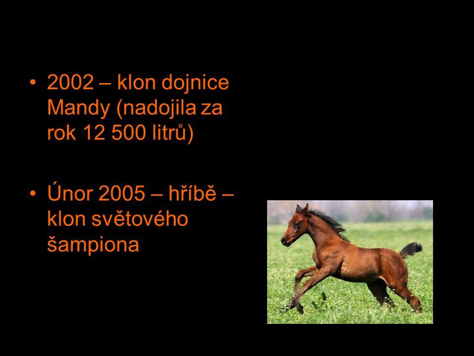 2002 – klon dojnice Mandy (nadojila za rok 12 500 litrů) Únor 2005 – hříbě – klon světového šampiona