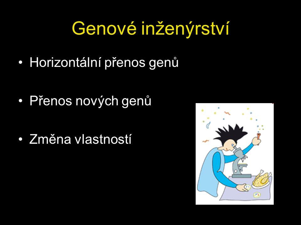 Transgenní organismy Organismy s novým genem v genomu (transgen) Geneticky modifikované