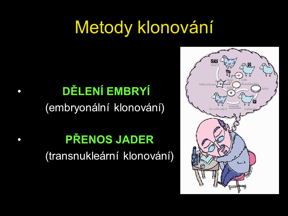 Metody klonování DĚLENÍ EMBRYÍ (embryonální klonování) PŘENOS JADER (transnukleární klonování)
