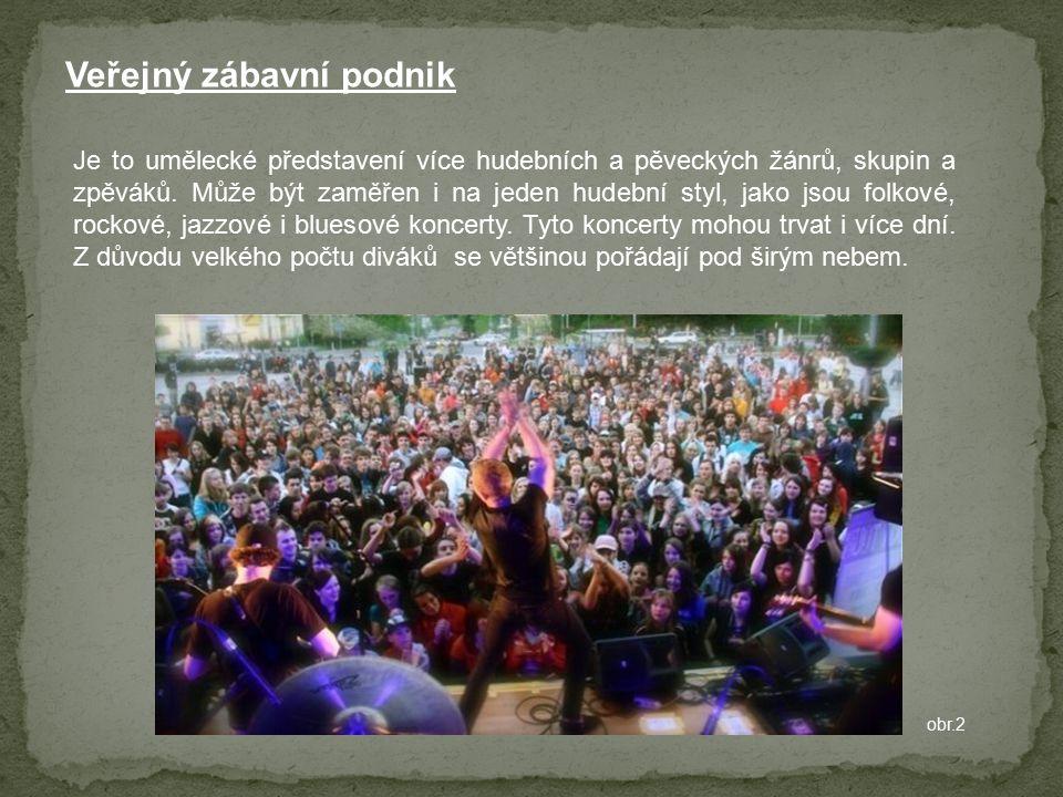 Veřejný zábavní podnik obr.2 Je to umělecké představení více hudebních a pěveckých žánrů, skupin a zpěváků. Může být zaměřen i na jeden hudební styl,