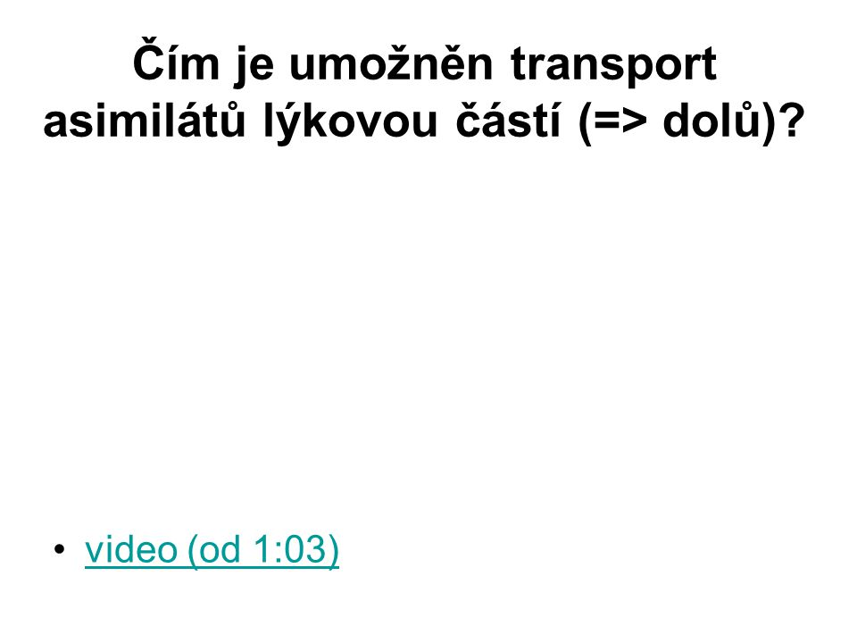 Čím je umožněn transport asimilátů lýkovou částí (=> dolů)? video (od 1:03)