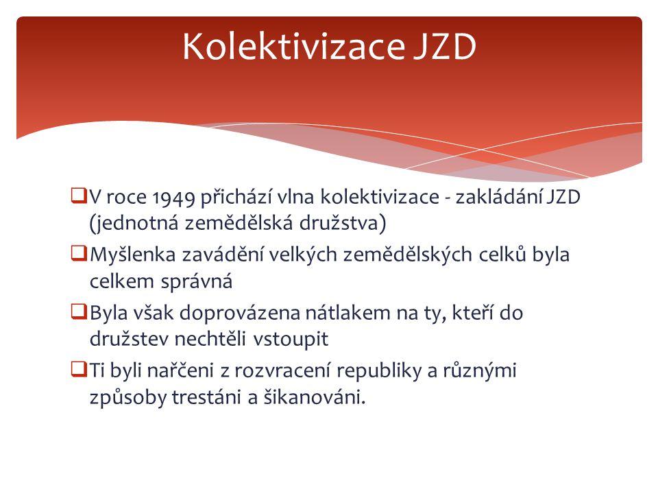  V roce 1949 přichází vlna kolektivizace - zakládání JZD (jednotná zemědělská družstva)  Myšlenka zavádění velkých zemědělských celků byla celkem sp
