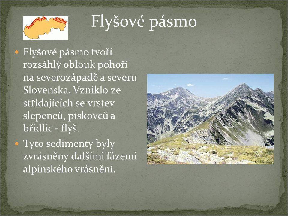 Flyšové pásmo Flyšové pásmo tvoří rozsáhlý oblouk pohoří na severozápadě a severu Slovenska. Vzniklo ze střídajících se vrstev slepenců, pískovců a bř