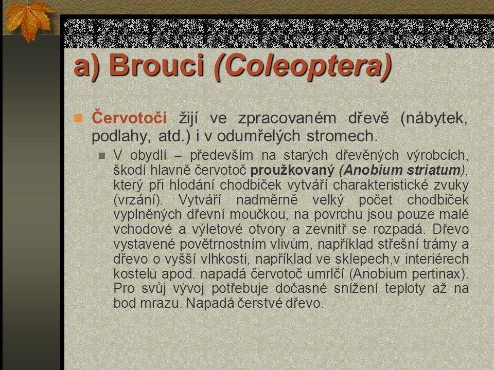 a) Brouci (Coleoptera) Na zpracovaném dřevě ve dřevěných stavbách a konstrukcích se vyskytuje především tesařík krovový (Hylotrupes bailus), který vyv