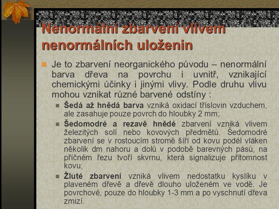 Další postup zavalování rány Z-zásušek Y-závitek X-zárost h) úplně zacelená rána, zásušek je hluboko pod povrchem, ve vnitřním dřevě Legenda :