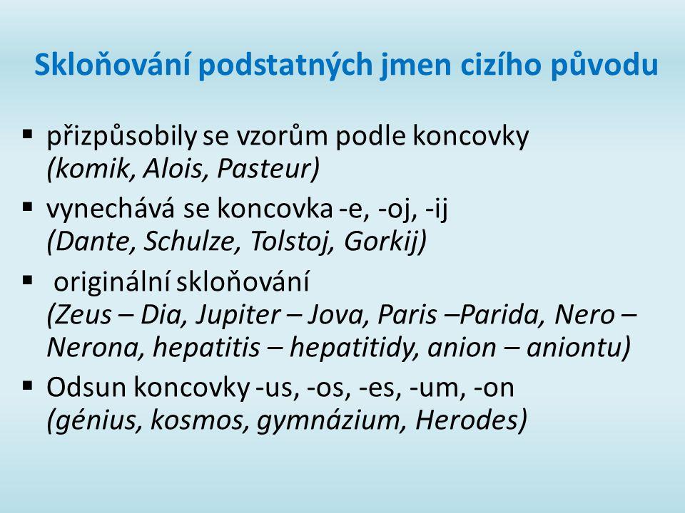Skloňování podstatných jmen cizího původu  přizpůsobily se vzorům podle koncovky (komik, Alois, Pasteur)  vynechává se koncovka -e, -oj, -ij (Dante, Schulze, Tolstoj, Gorkij)  originální skloňování (Zeus – Dia, Jupiter – Jova, Paris –Parida, Nero – Nerona, hepatitis – hepatitidy, anion – aniontu)  Odsun koncovky -us, -os, -es, -um, -on (génius, kosmos, gymnázium, Herodes)