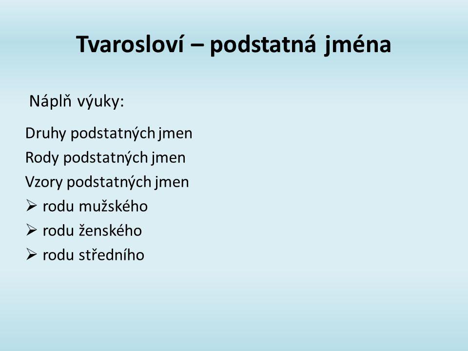 Tvarosloví – podstatná jména Druhy podstatných jmen Rody podstatných jmen Vzory podstatných jmen  rodu mužského  rodu ženského  rodu středního Náplň výuky: