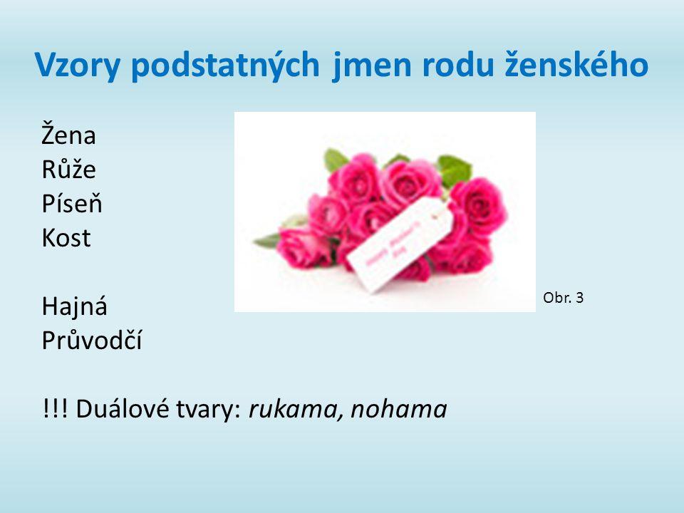 Vzory podstatných jmen rodu ženského Žena Růže Píseň Kost Hajná Průvodčí !!! Duálové tvary: rukama, nohama Obr. 3