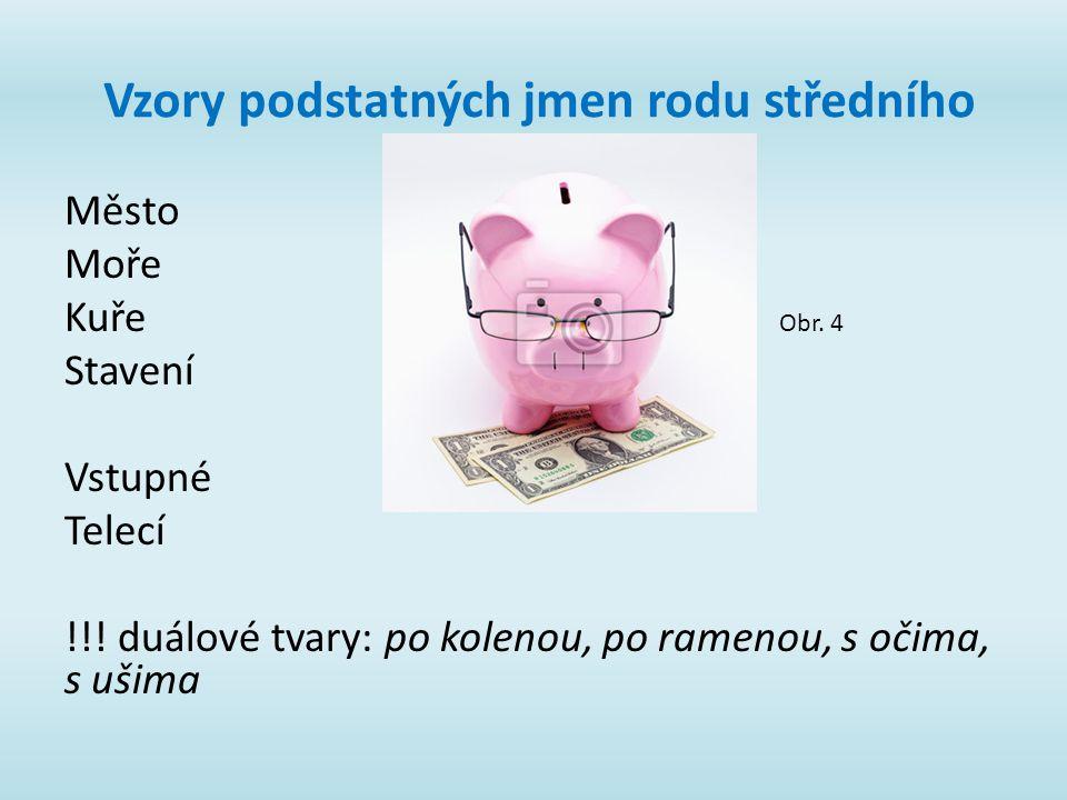 Vzory podstatných jmen rodu středního Město Moře Kuře Stavení Vstupné Telecí !!.