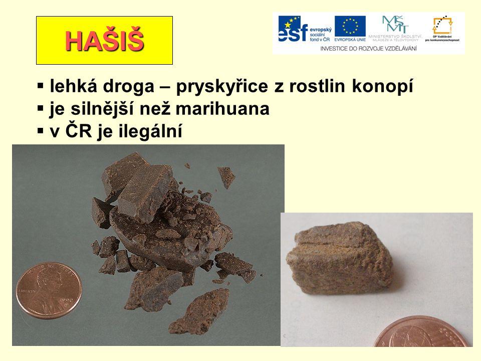 HAŠIŠ  lehká droga – pryskyřice z rostlin konopí  je silnější než marihuana  v ČR je ilegální