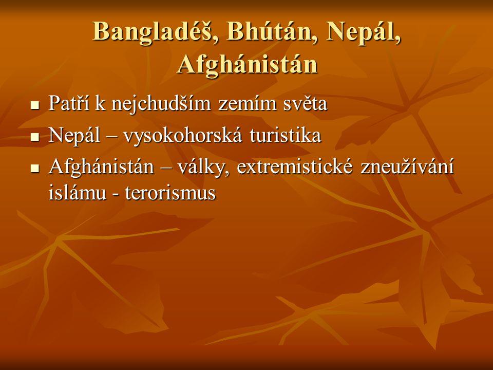 Bangladéš, Bhútán, Nepál, Afghánistán Patří k nejchudším zemím světa Patří k nejchudším zemím světa Nepál – vysokohorská turistika Nepál – vysokohorsk
