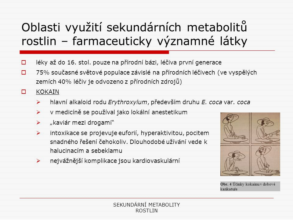 SEKUNDÁRNÍ METABOLITY ROSTLIN Oblasti využití sekundárních metabolitů rostlin – farmaceuticky významné látky  léky až do 16. stol. pouze na přírodní