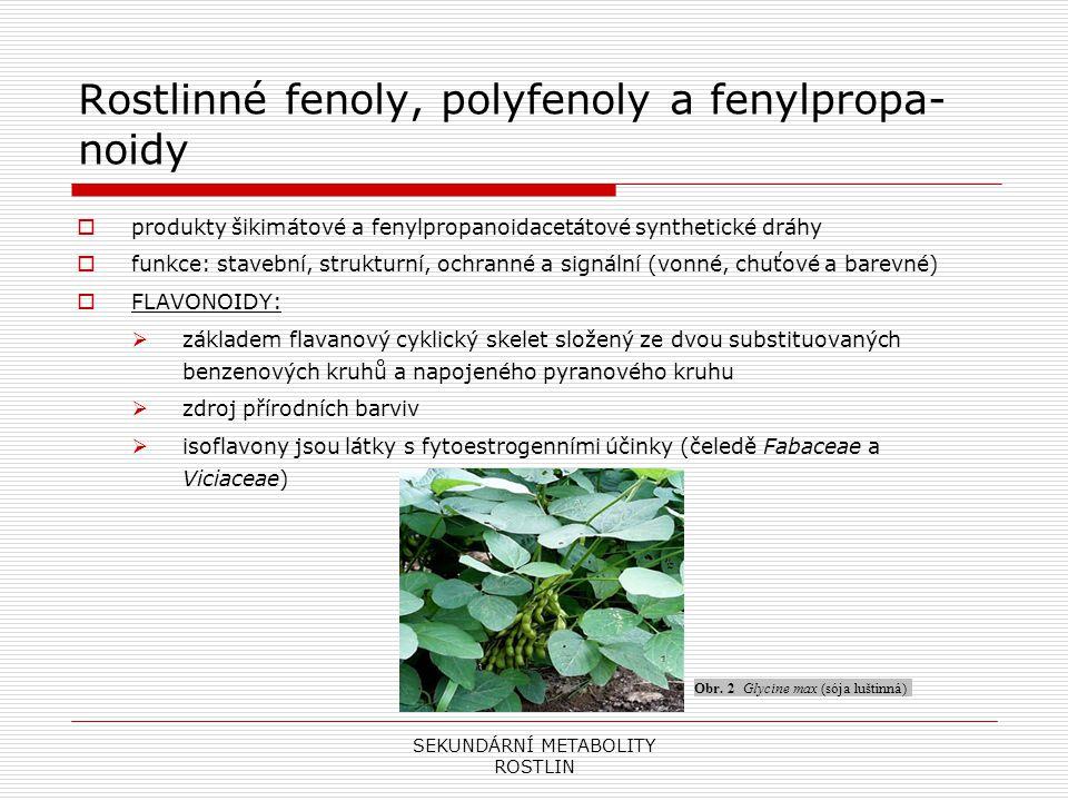 SEKUNDÁRNÍ METABOLITY ROSTLIN Rostlinné fenoly, polyfenoly a fenylpropa- noidy  TANINY (Třísloviny):  využívají se v kožedělném průmyslu a v potravinářství (zvýraznění chuti produktů typu hroznového vína, čaje, kávy)  LIGNIN A LIGNANY:  vyztužuje a zpevňuje stěny rostlin  lignocelulózové komplexy jsou základním stavebním prvkem dřevitých rostlin a surovinou pro papírenský průmysl  biologická funkce lignanů není plně identifikována, mají význam v obranném systému rostlin  lignany yatein a podophyllotoxin slouží k výrobě léčiv rakoviny