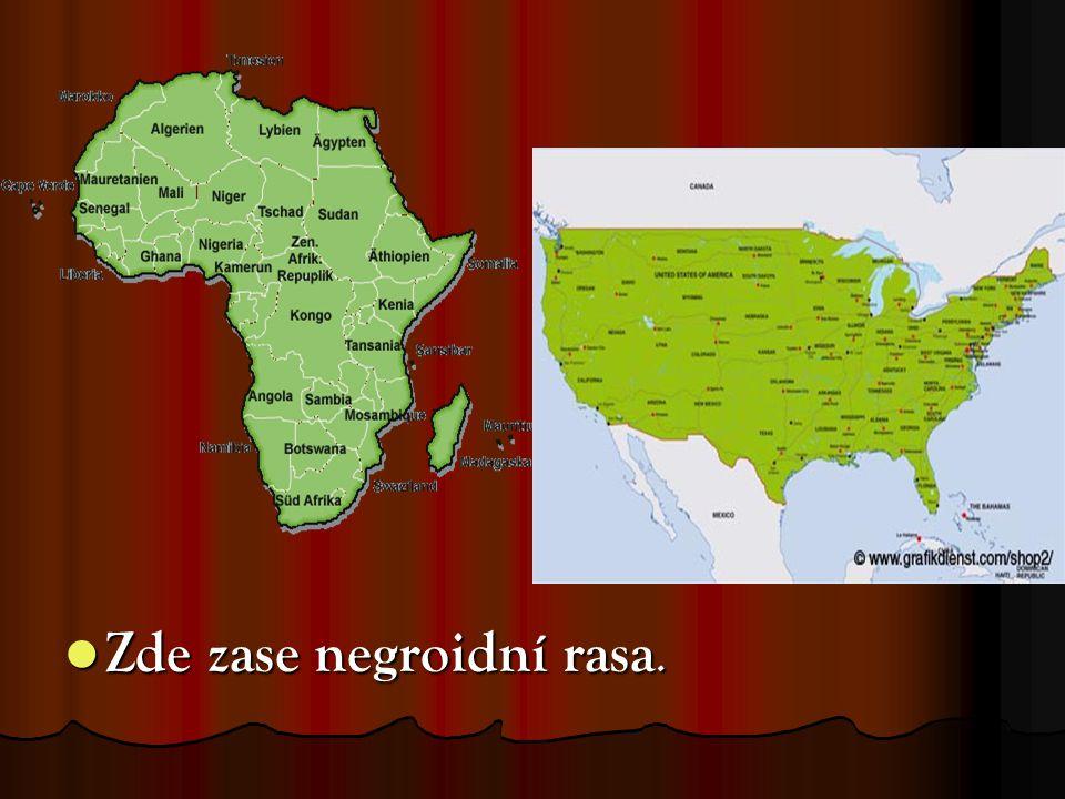 Zde zase negroidní rasa. Zde zase negroidní rasa.