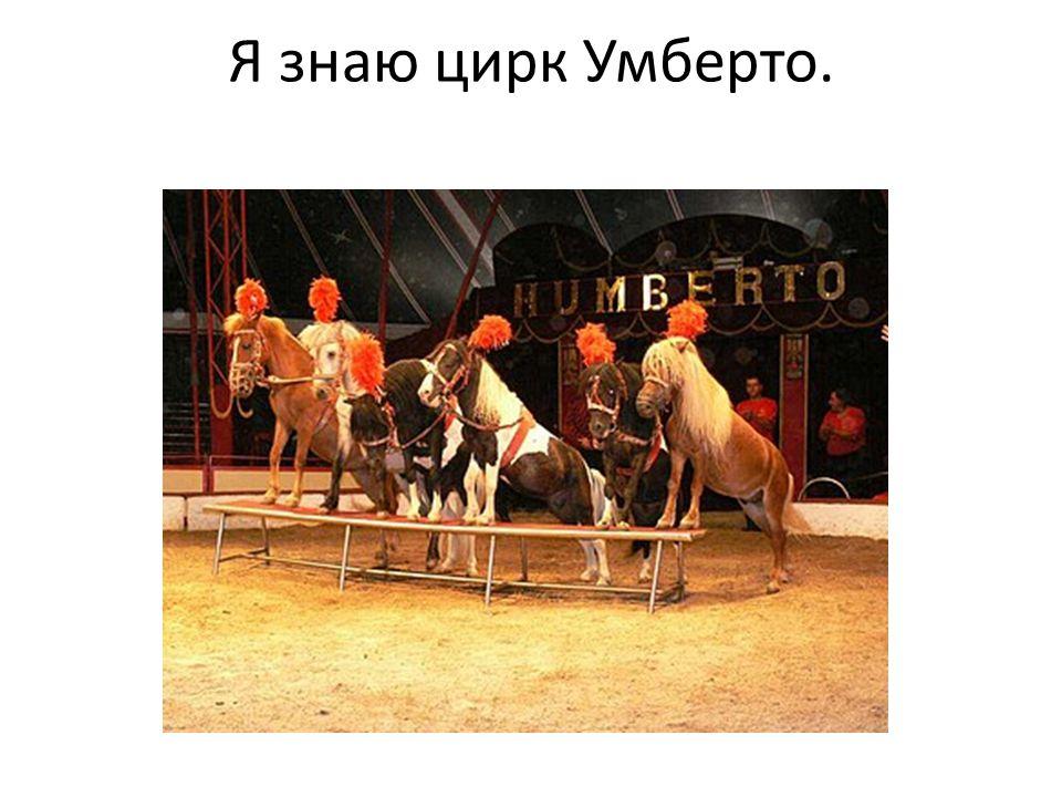 Я знаю цирк Умберто.