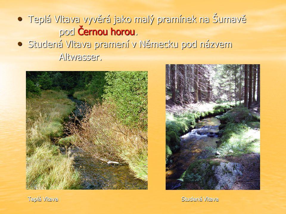 Teplá Vltava vyvěrá jako malý pramínek na Šumavě Teplá Vltava vyvěrá jako malý pramínek na Šumavě pod Černou horou.