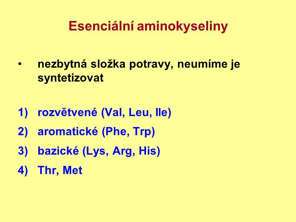 Esenciální aminokyseliny nezbytná složka potravy, neumíme je syntetizovat 1)rozvětvené (Val, Leu, Ile) 2)aromatické (Phe, Trp) 3)bazické (Lys, Arg, Hi