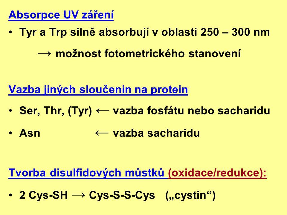 Absorpce UV záření Tyr a Trp silně absorbují v oblasti 250 – 300 nm → možnost fotometrického stanovení Vazba jiných sloučenin na protein Ser, Thr, (Ty