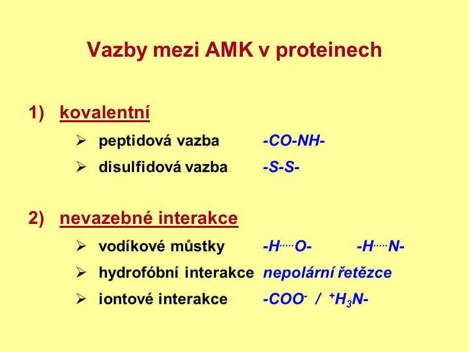 Vazby mezi AMK v proteinech 1)kovalentní  peptidová vazba -CO-NH-  disulfidová vazba-S-S- 2)nevazebné interakce  vodíkové můstky-H..... O--H..... N