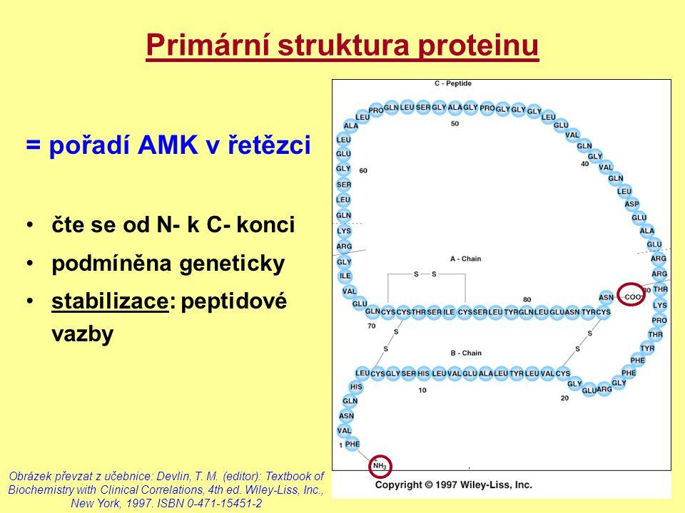 Primární struktura proteinu = pořadí AMK v řetězci čte se od N- k C- konci podmíněna geneticky stabilizace: peptidové vazby Obrázek převzat z učebnice
