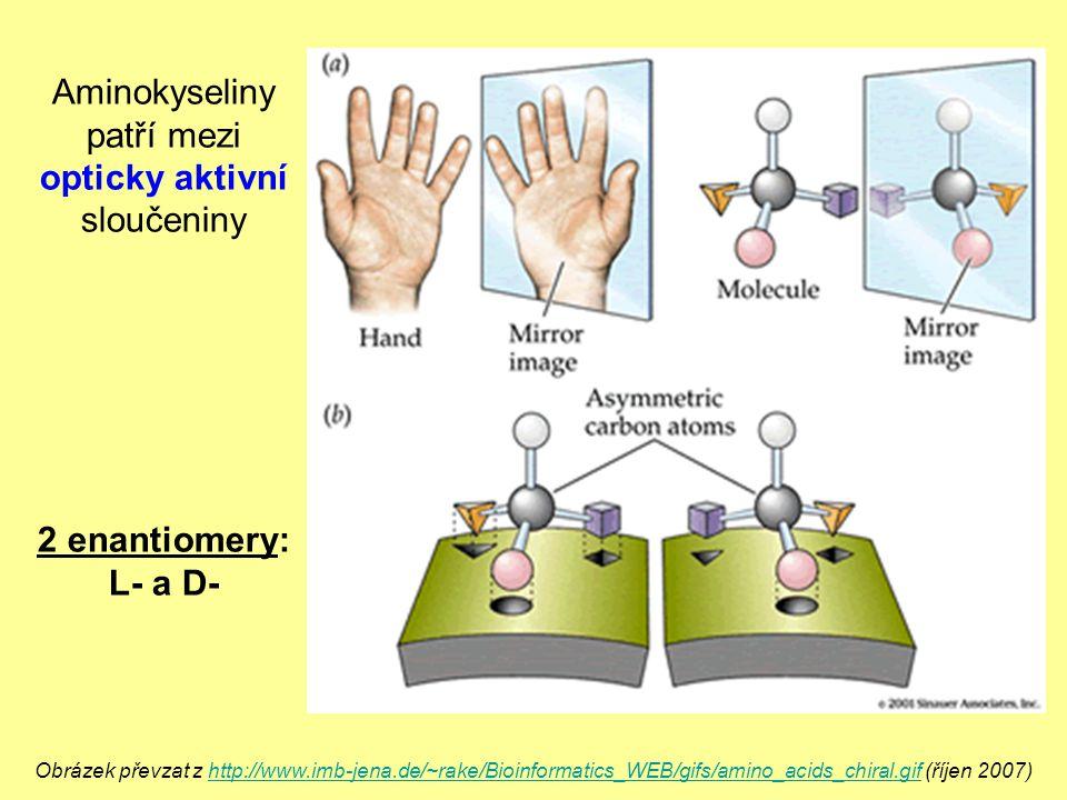 Obrázek převzat z http://www.imb-jena.de/~rake/Bioinformatics_WEB/gifs/amino_acids_chiral.gif (říjen 2007)http://www.imb-jena.de/~rake/Bioinformatics_