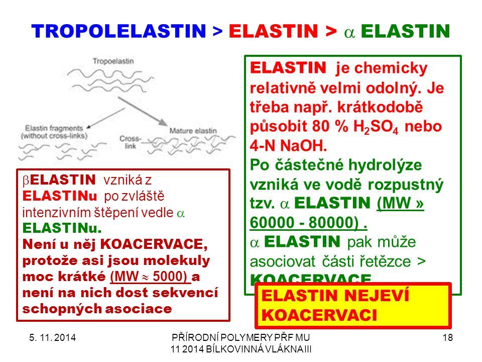 TROPOLELASTIN > ELASTIN >  ELASTIN 5. 11. 2014PŘÍRODNÍ POLYMERY PŘF MU 11 2014 BÍLKOVINNÁ VLÁKNA III 18 ELASTIN je chemicky relativně velmi odolný.