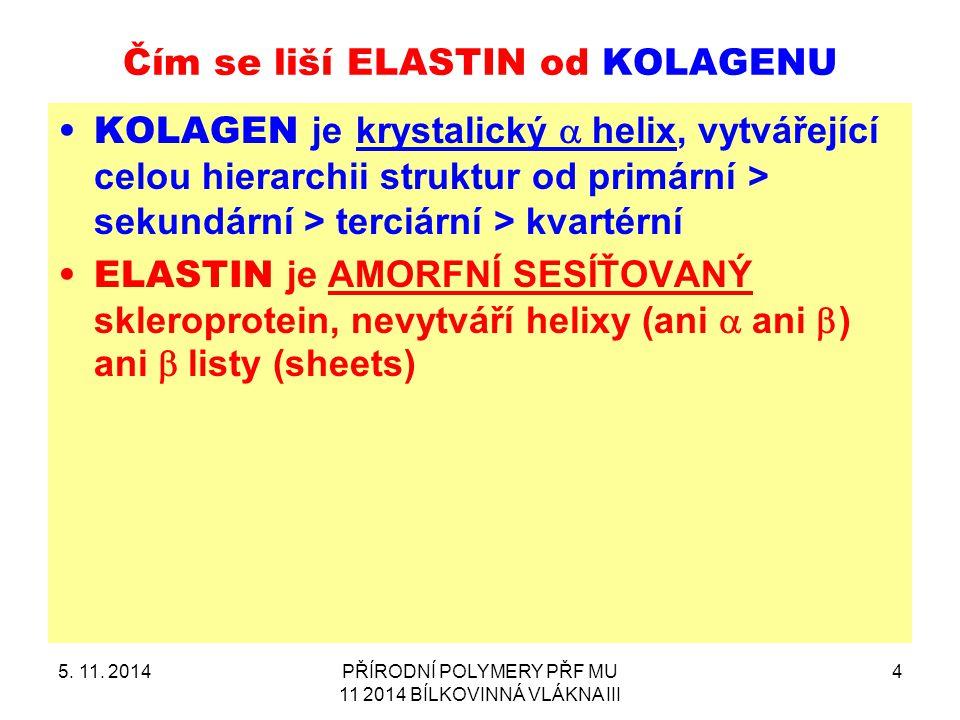 Čím se liší ELASTIN od KOLAGENU KOLAGEN je krystalický  helix, vytvářející celou hierarchii struktur od primární > sekundární > terciární > kvartérní ELASTIN je AMORFNÍ SESÍŤOVANÝ skleroprotein, nevytváří helixy (ani  ani  ) ani  listy (sheets) 5.