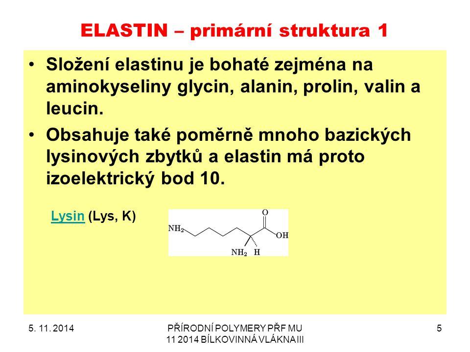 ELASTIN – primární struktura 1 Složení elastinu je bohaté zejména na aminokyseliny glycin, alanin, prolin, valin a leucin. Obsahuje také poměrně mnoho