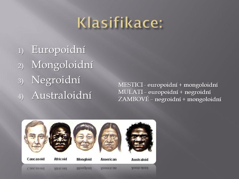 1) Europoidní 2) Mongoloidní 3) Negroidní 4) Australoidní MESTICI - europoidní + mongoloidní MULATI – europoidní + negroidní ZAMBOVÉ – negroidní + mongoloidní