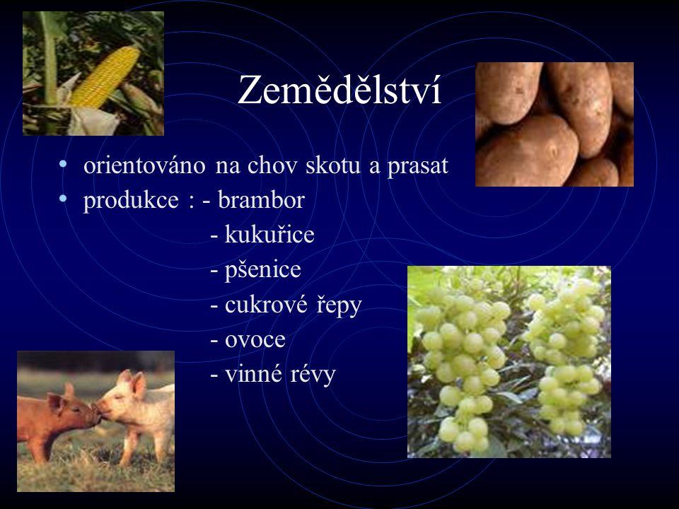 Zemědělství orientováno na chov skotu a prasat produkce : - brambor - kukuřice - pšenice - cukrové řepy - ovoce - vinné révy