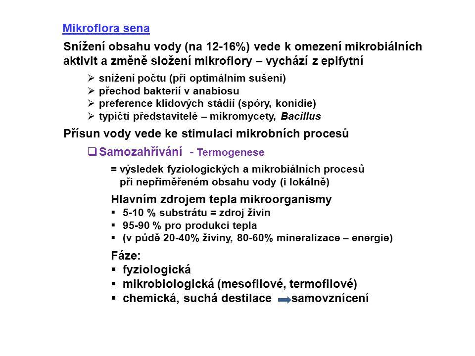 Mikroflora sena Snížení obsahu vody (na 12-16%) vede k omezení mikrobiálních aktivit a změně složení mikroflory – vychází z epifytní  snížení počtu (