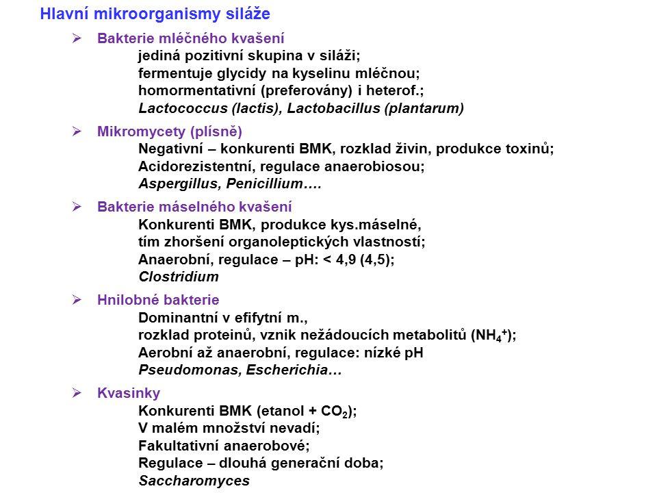 Regulace procesů v siláži  Anaerobiosa = nezastupitelná podmínka  Očkování BMK – nutný ale dostatek glycidů Polyvalentní x monovalentní; Enterococcus faecium (Lactisil) Lactobacillus  Doplnění dalších mikroorganismů Především jako zdroj hydrolas Bacillus, Aspergillus…  Kombinované přípravky Obsahují enzymovou složku (hydrolýza polysacharidů – např.