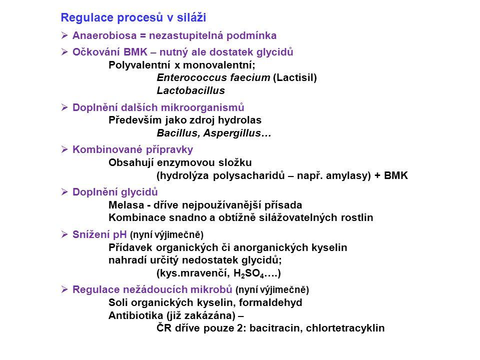 Regulace procesů v siláži  Anaerobiosa = nezastupitelná podmínka  Očkování BMK – nutný ale dostatek glycidů Polyvalentní x monovalentní; Enterococcu
