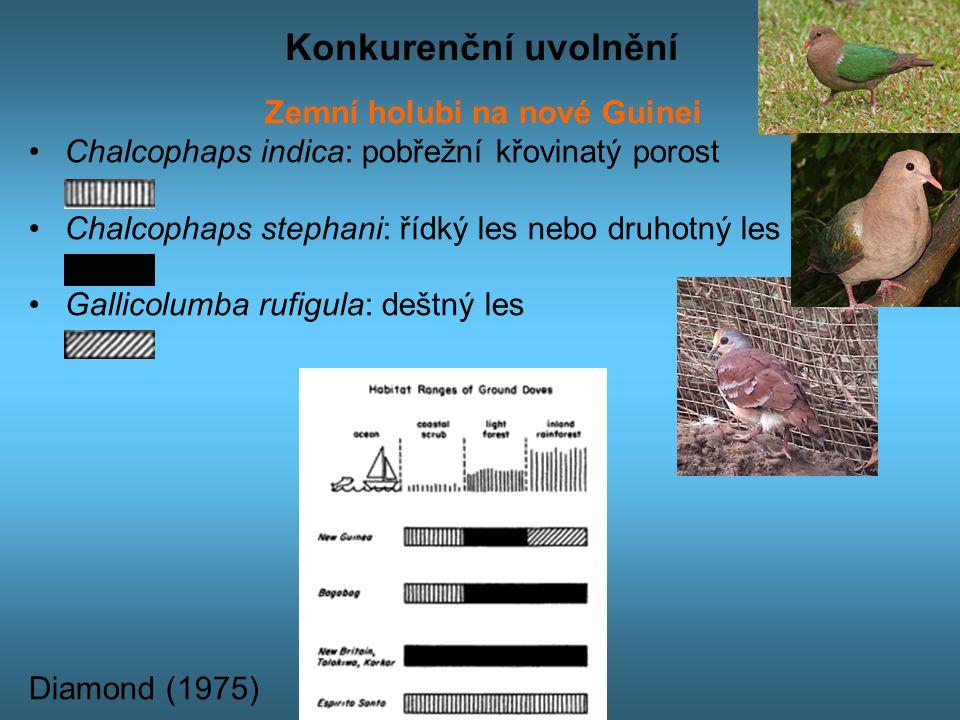 Konkurenční uvolnění Zemní holubi na nové Guinei Chalcophaps indica: pobřežní křovinatý porost Chalcophaps stephani: řídký les nebo druhotný les Gallicolumba rufigula: deštný les Diamond (1975)
