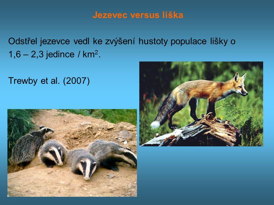 Jezevec versus liška Odstřel jezevce vedl ke zvýšení hustoty populace lišky o 1,6 – 2,3 jedince / km 2.
