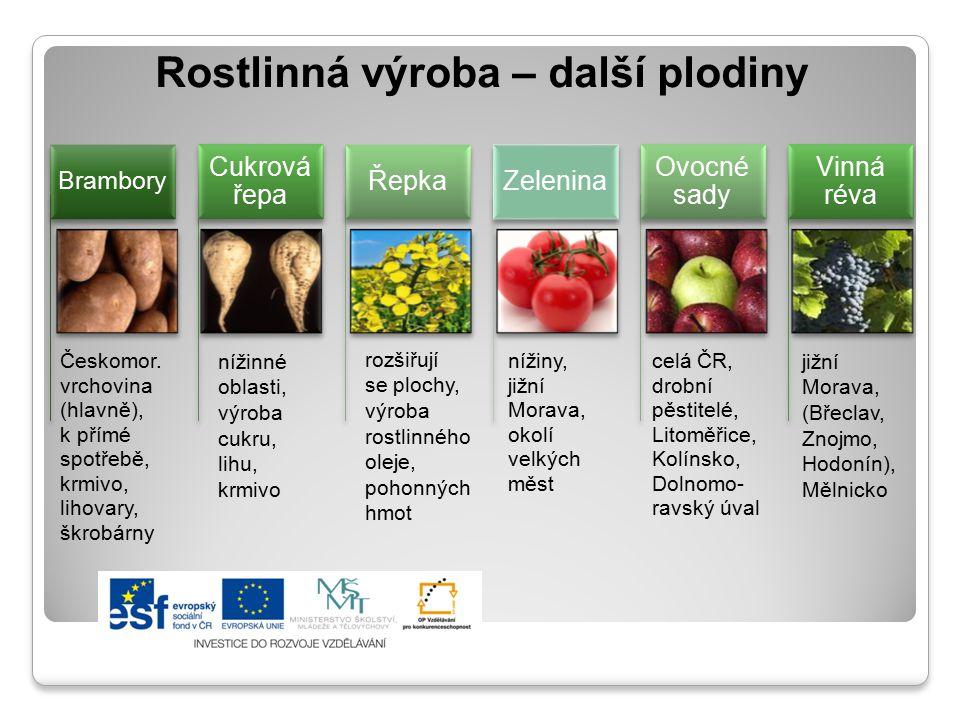 Rostlinná výroba – další plodiny Českomor. vrchovina (hlavně), k přímé spotřebě, krmivo, lihovary, škrobárny Brambory Cukrová řepa Řepka nížiny, jižní