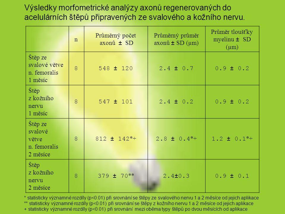 n Průměrný počet axonů ± SD Průměrný průměr axonů ± SD (µm) Průměr tloušťky myelinu ± SD (µm) Štěp ze svalové větve n. femoralis 1 měsíc 8548 ± 1202.4