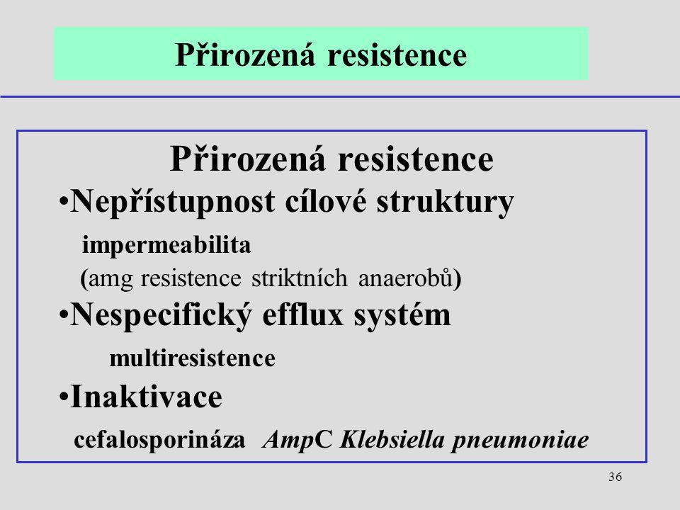 36 Přirozená resistence Nepřístupnost cílové struktury impermeabilita (amg resistence striktních anaerobů) Nespecifický efflux systém multiresistence