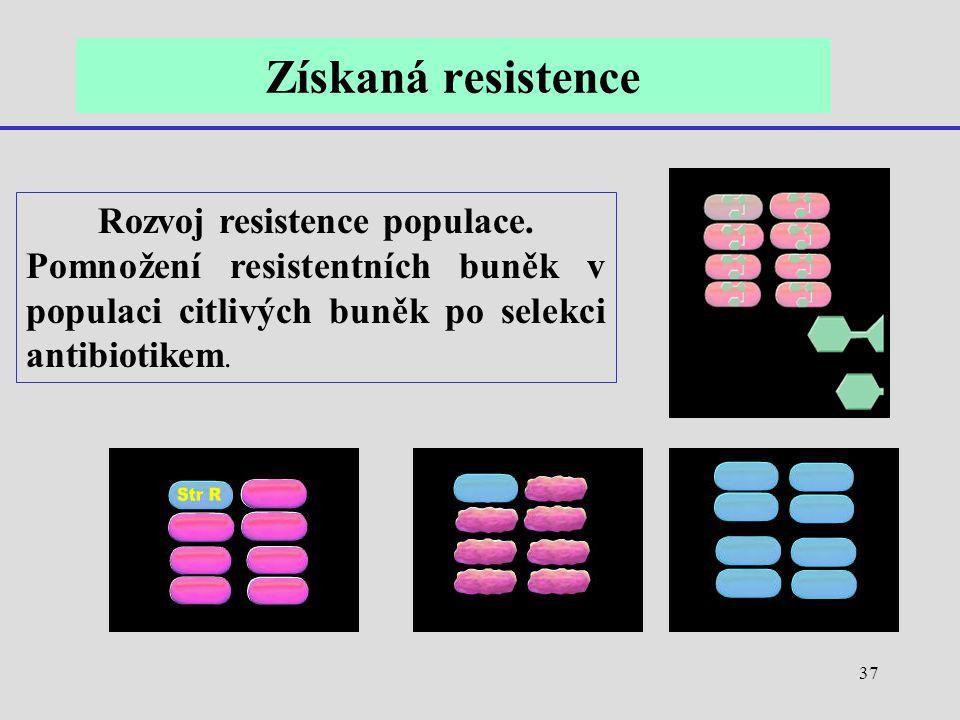 37 Rozvoj resistence populace. Pomnožení resistentních buněk v populaci citlivých buněk po selekci antibiotikem. Získaná resistence