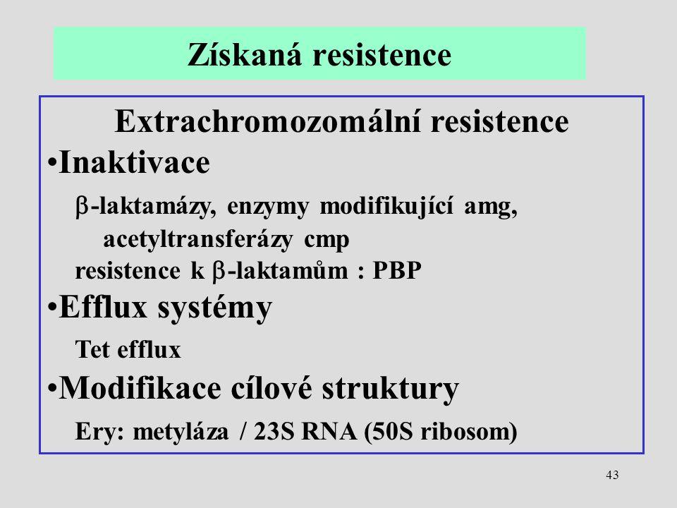 43 Extrachromozomální resistence Inaktivace  -laktamázy, enzymy modifikující amg, acetyltransferázy cmp resistence k  -laktamům : PBP Efflux systémy