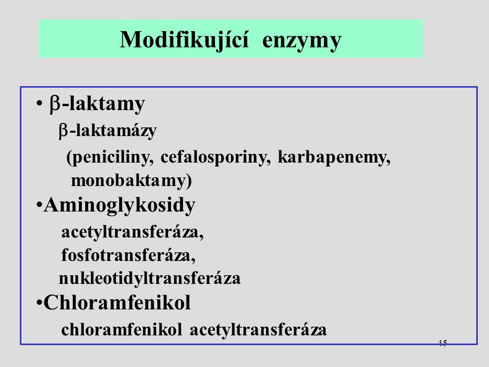 45  -laktamy  -laktamázy (peniciliny, cefalosporiny, karbapenemy, monobaktamy) Aminoglykosidy acetyltransferáza, fosfotransferáza, nukleotidyltransf