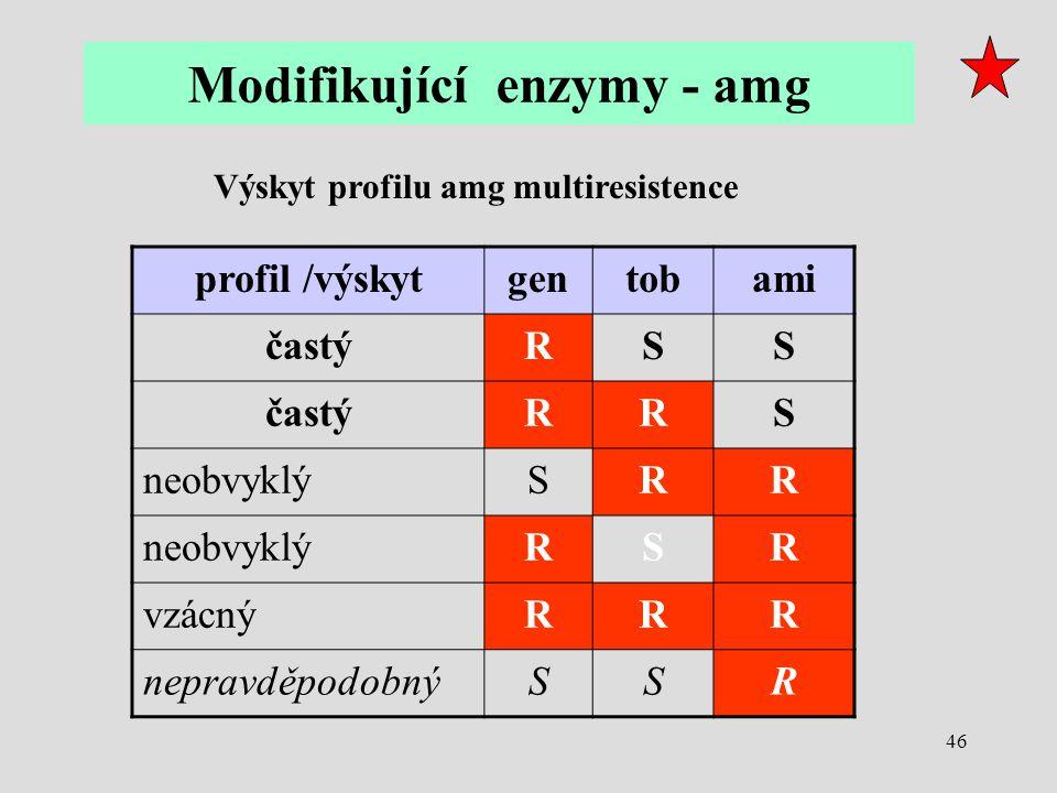 46 profil /výskytgentobami častýRSS RRS neobvyklýSRR RSR vzácnýRRR nepravděpodobnýSSR Výskyt profilu amg multiresistence Modifikující enzymy - amg