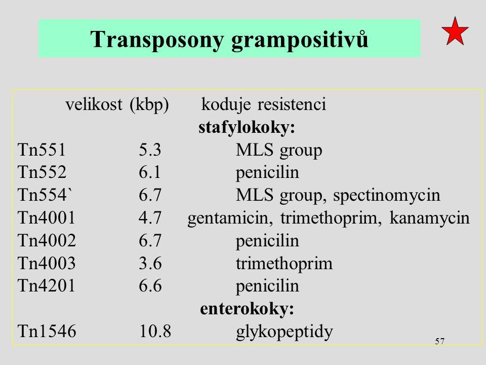 57 velikost (kbp) koduje resistenci stafylokoky: Tn551 5.3 MLS group Tn552 6.1 penicilin Tn554` 6.7 MLS group, spectinomycin Tn4001 4.7 gentamicin, tr
