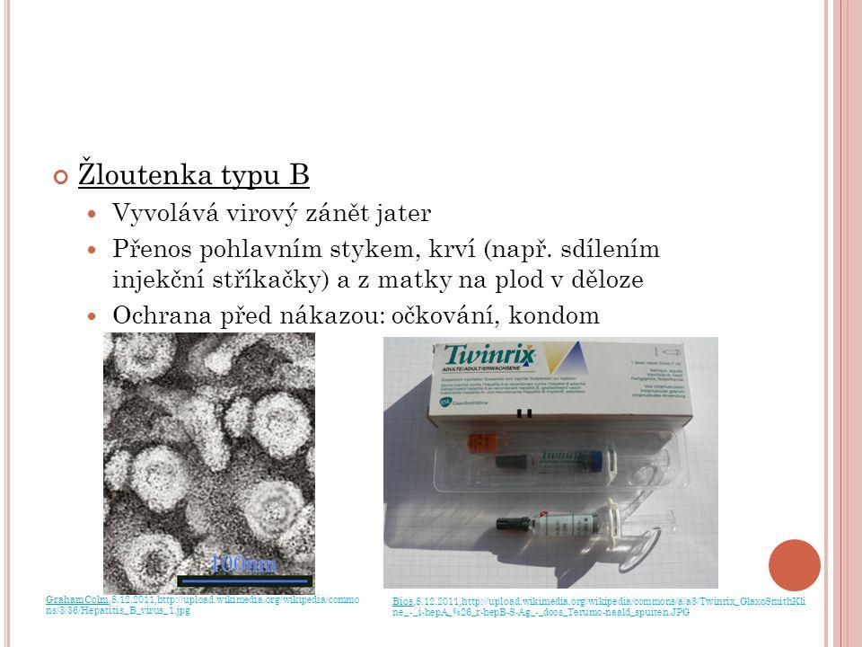 Žloutenka typu B Vyvolává virový zánět jater Přenos pohlavním stykem, krví (např. sdílením injekční stříkačky) a z matky na plod v děloze Ochrana před