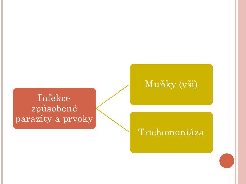 Infekce způsobené parazity a prvoky Muňky (vši)Trichomoniáza