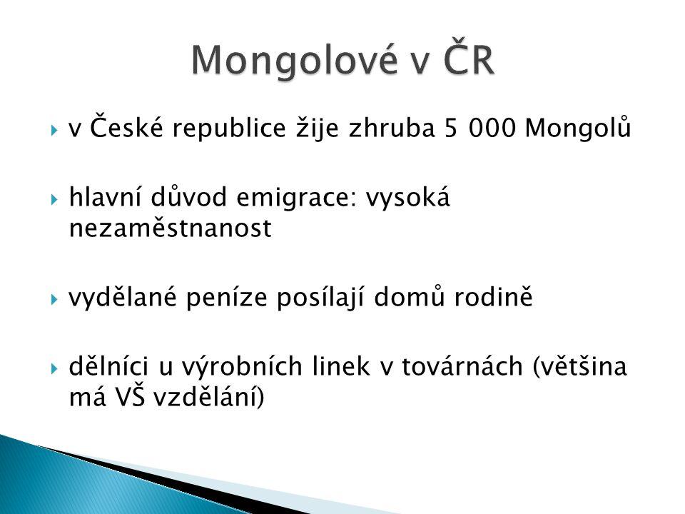  v České republice žije zhruba 5 000 Mongolů  hlavní důvod emigrace: vysoká nezaměstnanost  vydělané peníze posílají domů rodině  dělníci u výrobních linek v továrnách (většina má VŠ vzdělání)