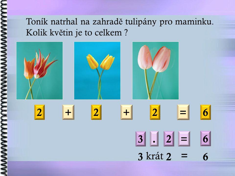 Toník natrhal na zahrad ě tulipány pro maminku. Kolik kv ě tin je to celkem .