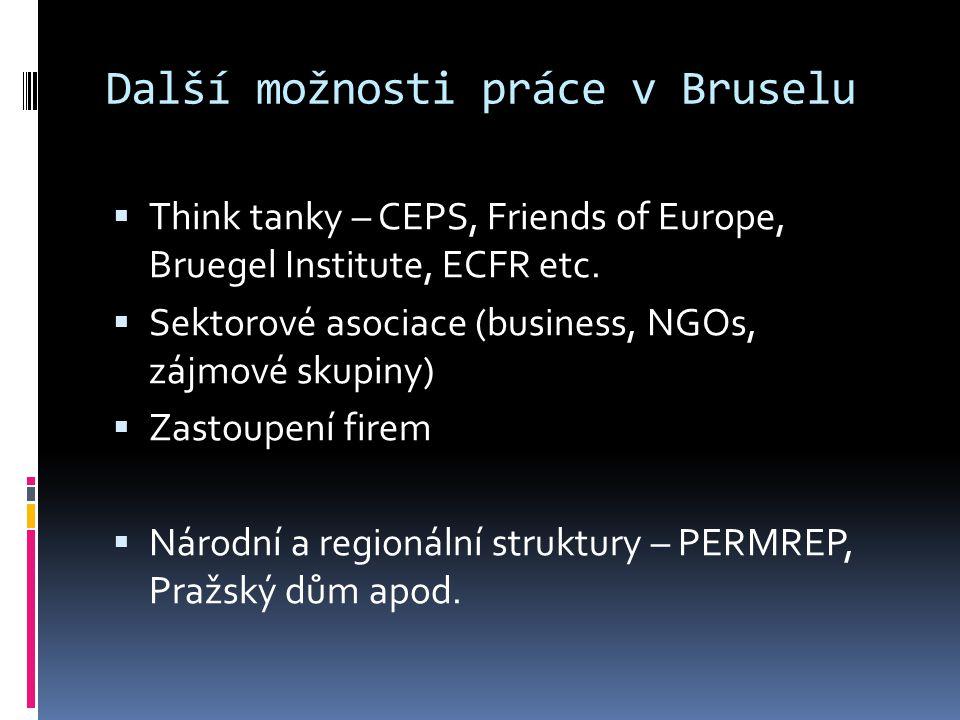 Další možnosti práce v Bruselu  Think tanky – CEPS, Friends of Europe, Bruegel Institute, ECFR etc.