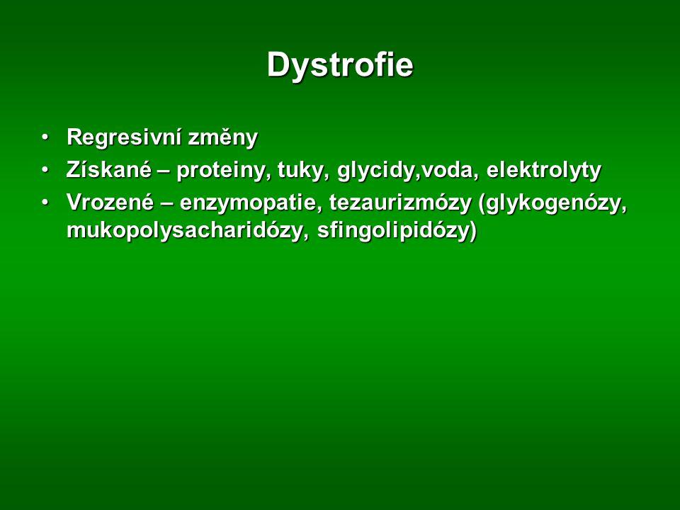 Dystrofie Regresivní změnyRegresivní změny Získané – proteiny, tuky, glycidy,voda, elektrolytyZískané – proteiny, tuky, glycidy,voda, elektrolyty Vrozené – enzymopatie, tezaurizmózy (glykogenózy, mukopolysacharidózy, sfingolipidózy)Vrozené – enzymopatie, tezaurizmózy (glykogenózy, mukopolysacharidózy, sfingolipidózy)